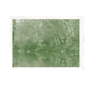 Kaiela (Goulburn River) Tea Towel